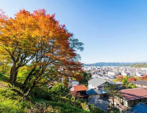 Our Guide: Takayama